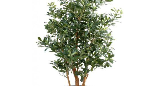 plante-artificielle-exterieur