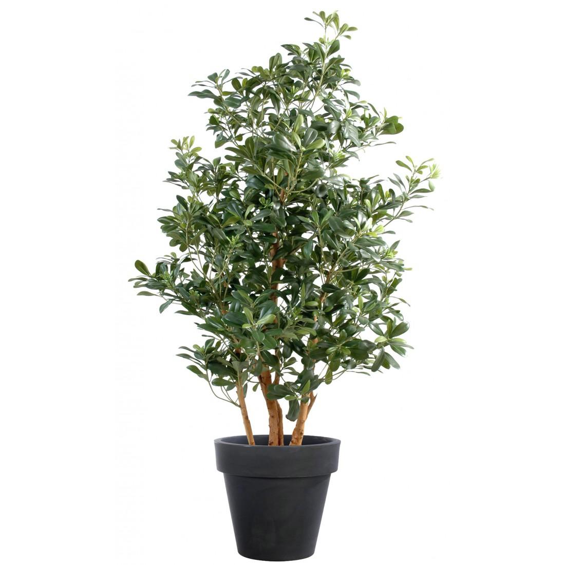 Plantes artificielles toutes les raisons de les for Plantes artificielles terrasse
